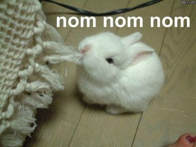 What I got when I typed NOM into the google image search